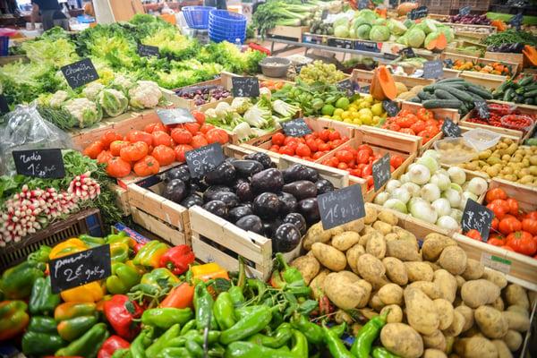 aubergines-bio-cabbage-5205