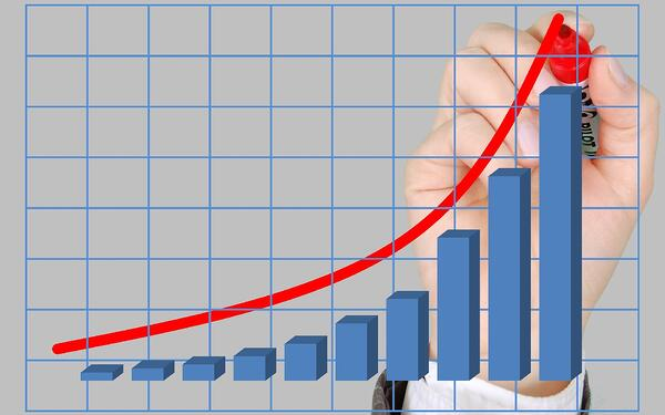 growth and profits